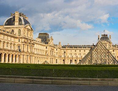 Pożar katedry Notre Dame. Ocalałe dzieła sztuki zostaną przeniesione do...