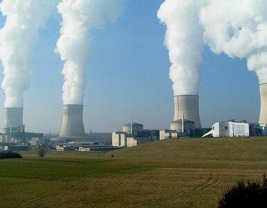 Słowacja stawia na atom