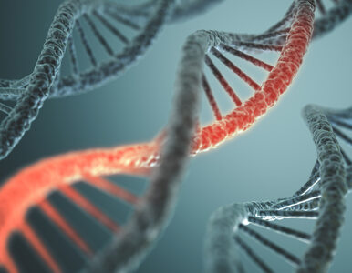 Innowacje w medycynie. W przyszłości będzie możliwe naprawianie DNA, a...