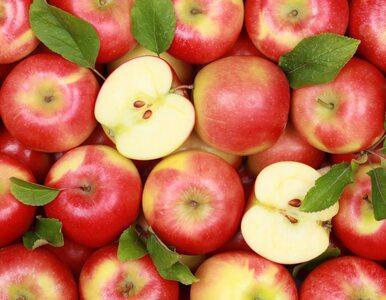KE chce dalej wspierać producentów owoców i warzyw