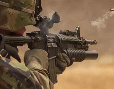 Czesi udaremnili przemyt broni do Iranu