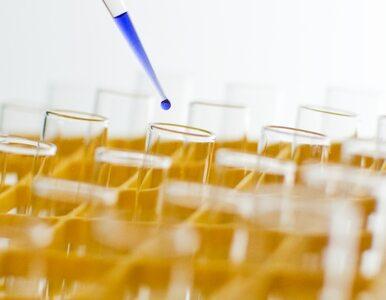 Neumann o in vitro: Staraliśmy się przygotować projekt kompromisowy
