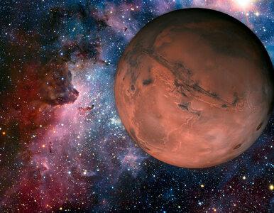 """Elon Musk przedstawił plan kolonizacji Marsa. """"Pytanie brzmi - czy..."""