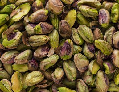 Cudowne właściwości pistacji