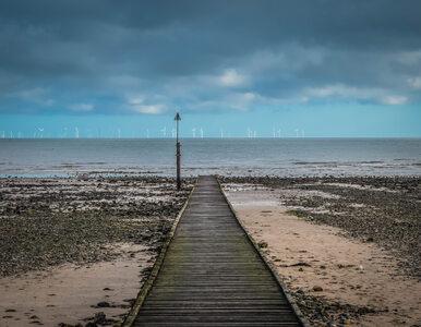 Bałtyk – morze energii