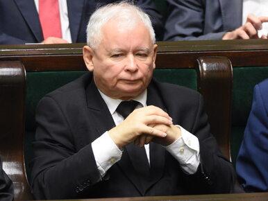 PiS przesunie termin wyborów samorządowych? Terlecki informuje o...