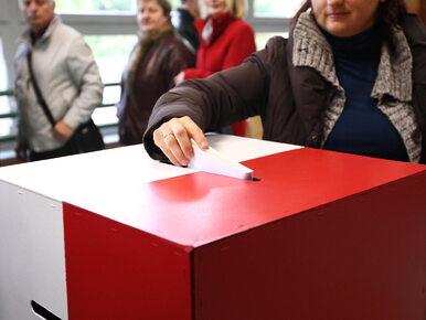 Wybory samorządowe. Jak głosować, aby głos był ważny?