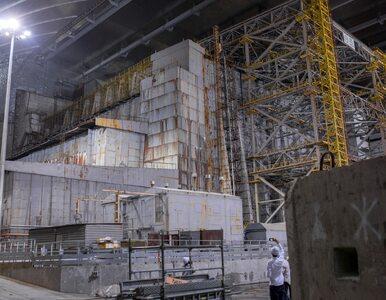 Grzyb z Czarnobyla uratuje ludzi na Marsie? Brzmi absurdalnie, ale to...