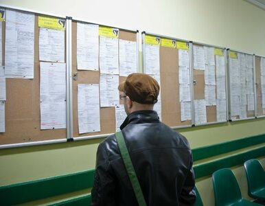 Zmiany na rynku pracy w 2019 roku. Bezrobocie w Polsce przestanie spadać