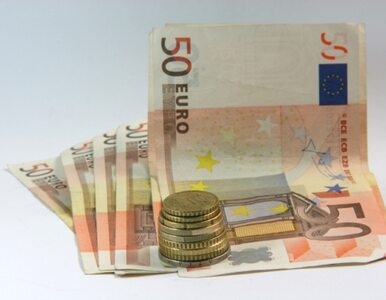 """""""Drukując pieniądze nie uratujemy Europy"""""""