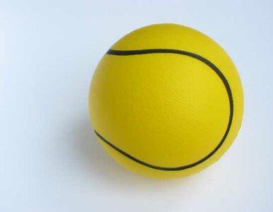 Turniej ATP w Halle: Kubot w finale nie zagra
