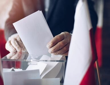 Wyniki wyborów 2020. PKW podała oficjalne wyniki z 99 proc. obwodów