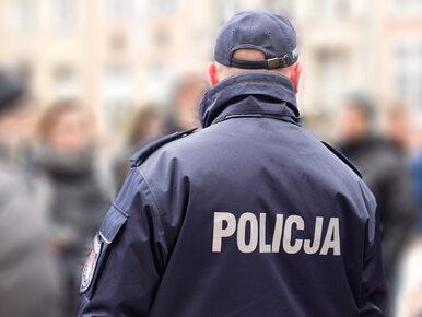 """""""Pourlopowe refleksje"""" Policji hitem sieci. Funkcjonariusze znów..."""