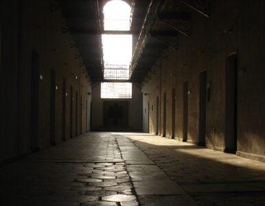 USA: gwałciciel trafił do więzienia po... 35 latach