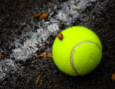 Venus przegrała, Serena gra dalej