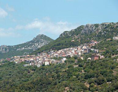 144 misje ratunkowe w ciągu roku. Burmistrz z Sardynii wini Google Maps
