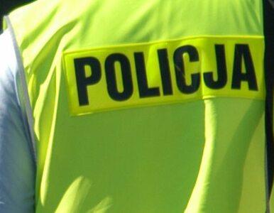 Policja szuka rekrutów. Do końca roku przyjmie 5 tysięcy osób
