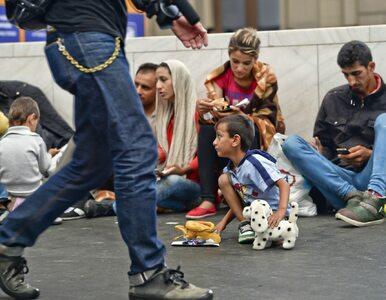 Ilu uchodźców trzeba przyjąć, by udobruchać Brukselę? Słowakom...