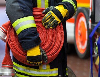 Potężny pożar hali pod Gnieznem. Z ogniem walczy 30 zastępów straży