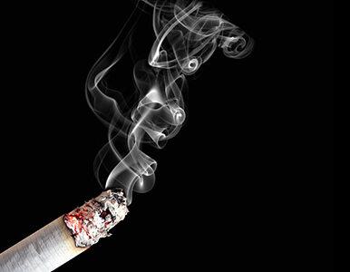 PiS chce zakazać palenia w ogródkach piwnych