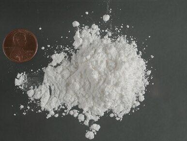 Szarmancki sprzedawca kokainy