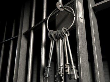 Jest oskarżony o popełnienie 92 przestępstw i siedzi w areszcie. Wygrał...