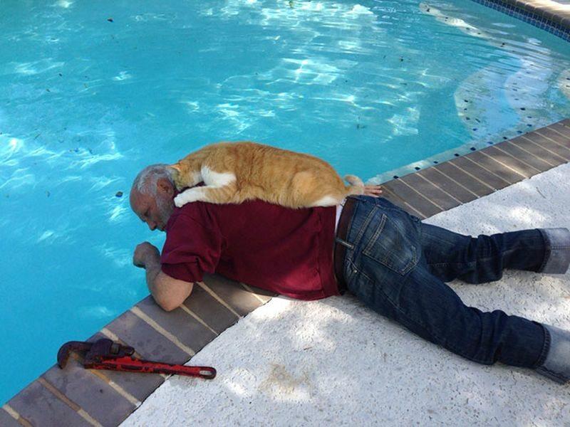 Nieoceniona pomoc przy naprawianiu basenu
