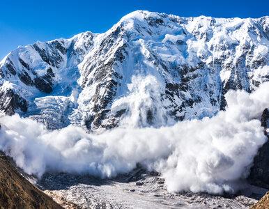 Lawina we francuskich Alpach. Zginęło pięciu żołnierzy