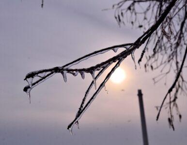 Pogoda na piątek: Ciepło w całym kraju