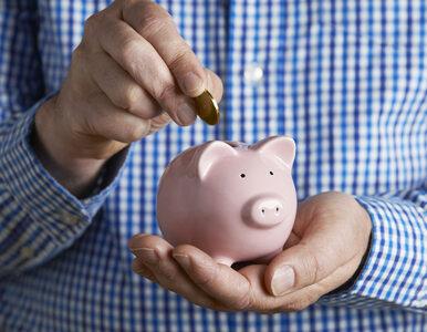 Zakupy z pełnym brzuchem. Jak mądrze oszczędzać i inwestować?