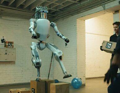 Znęcali się nad robotem, więc odpowiedział agresją. Teraz muszą...