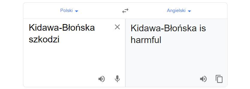 """Tłumacz Google i fraza """"Kidawa-Błońska szkodzi"""""""