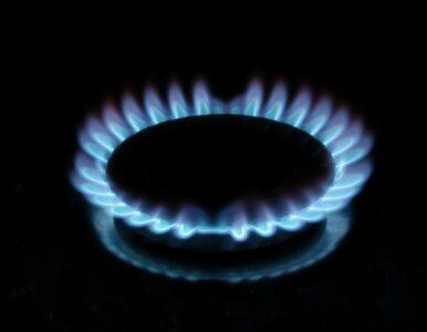 Dochodzenie w sprawie Gazpromu pomoże gazowi łupkowemu?