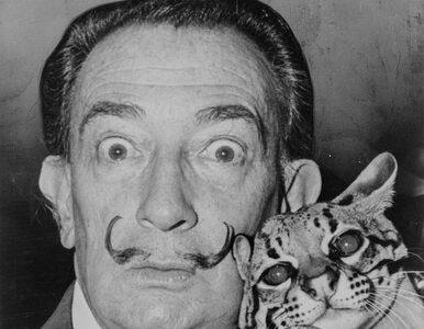 """Salvador Dali ekshumowany. """"Wąsy artysty pozostały nienaruszone"""""""