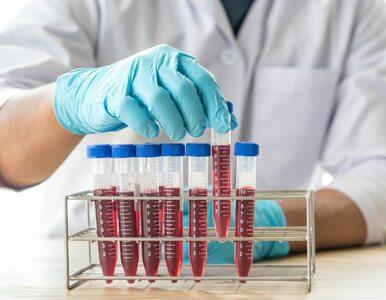 Na nowotwór krwi może zachorować każdy