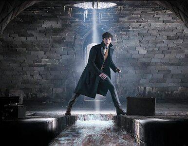 """""""Fantastyczne zwierzęta: Zbrodnie Grindelwalda"""" w kinach. Czy odtwórcy..."""
