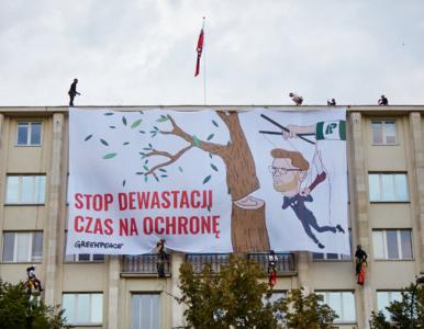 Baner z Wosiem wycinającym drzewo. Akcja Greenpeace'u na dachu...