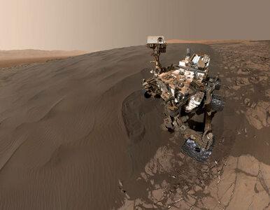 Odkrycie Curiosity zadało cios zwolennikom teorii o życiu na Marsie?