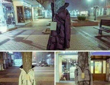 Kurtki na drzewach? Nietypowa akcja społeczna