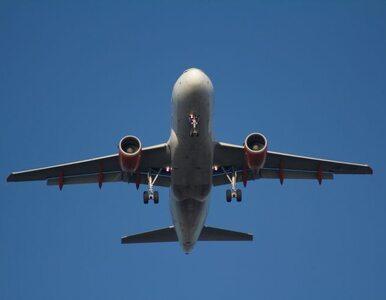 W miejscu gdzie spadł zestrzelony Boeing wciąż odnajdywane są ludzkie...
