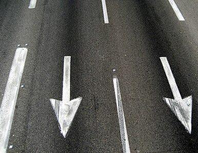 PiS krytykuje władze miasta za... remontowanie drogi