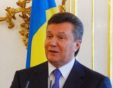 """""""Janukowycz to dyktator"""""""