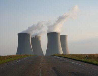 """Katastrofie w Fukushimie winny jest człowiek. """"Rząd zawiódł"""""""