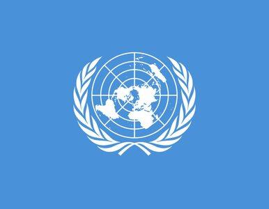 Kontyngent ONZ zostanie wysłany do Donbasu?
