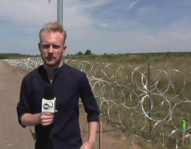Węgry odgradzają się od imigrantów. Na granicy z Serbią rośnie 4-metrowy...