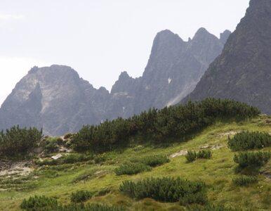 Zwłoki turysty znalezione w Tatrach