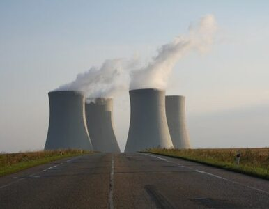 Polacy nie chcą kolejnego Czarnobyla ani Fukushimy, więc protestują